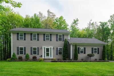 Erie County Single Family Home A-Active: 8780 County Road