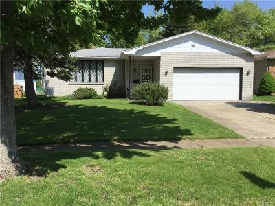 Erie County Single Family Home A-Active: 39 South View Drive