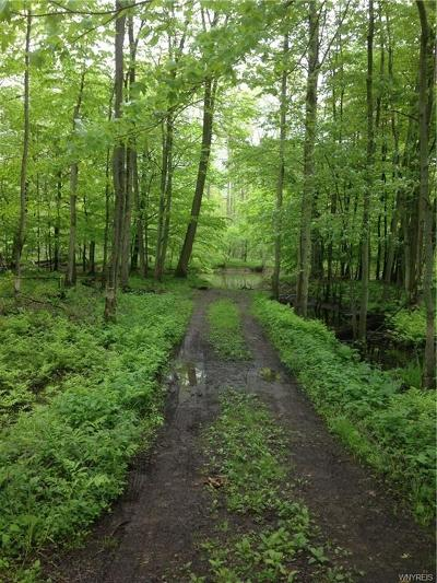 Allegany County, Cattaraugus County Residential Lots & Land A-Active: V/L Brown Road