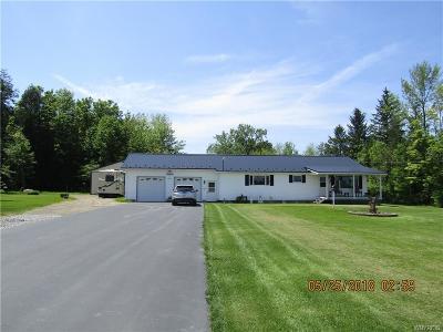 North Collins Single Family Home A-Active: 10836 Fox Avenue