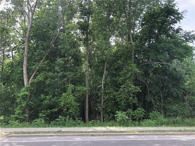 Amherst Residential Lots & Land A-Active: 3370 Niagara Falls Blvd