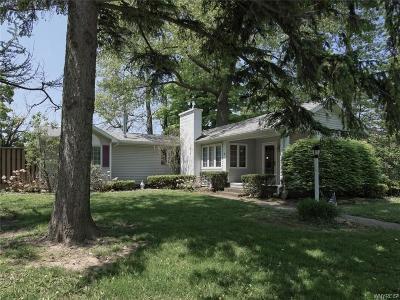 Buffalo, Evans, Hamburg Single Family Home A-Active: 9640 Lake Shore Road