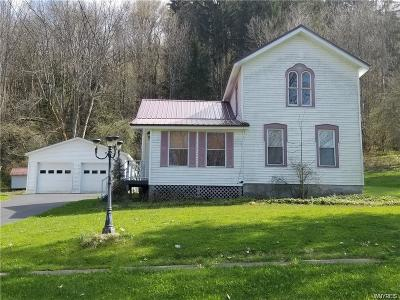 Little Valley Single Family Home A-Active: 208 Eagle Street