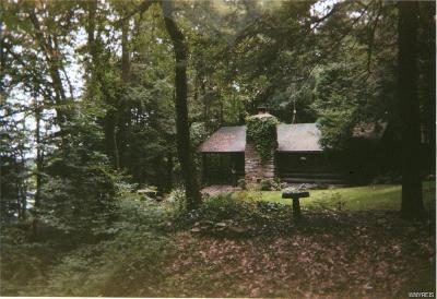 Allegany County, Cattaraugus County Single Family Home A-Active: 8578 County Road 49