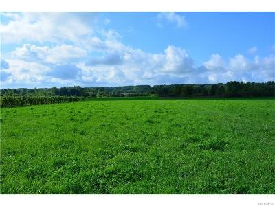 Niagara County Residential Lots & Land A-Active: 4788 Lower Mountain Road