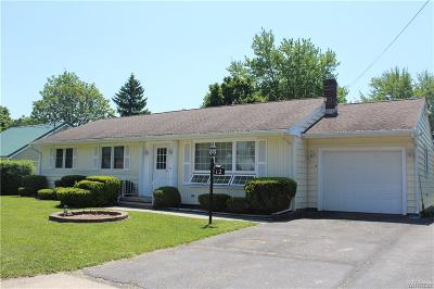 Genesee County Single Family Home A-Active: 12 Denio Street