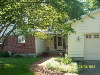 Allegany Single Family Home A-Active: 21 Saint Marys Drive