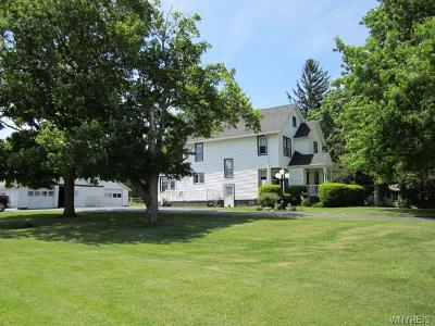 Genesee County Single Family Home A-Active: 7696 Lewiston Road