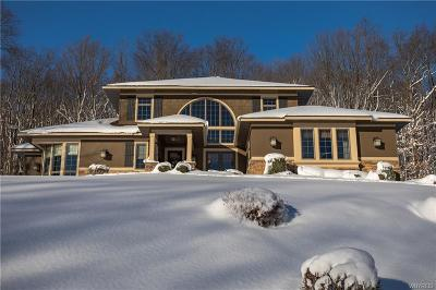 Ellicottville NY Single Family Home A-Active: $870,000