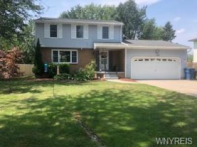 Grand Island Single Family Home C-Continue Show: 3042 Baseline Road
