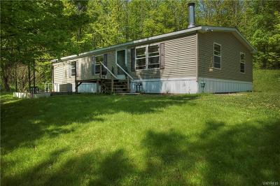 Cattaraugus Single Family Home A-Active: 9118 Potter Hill Road