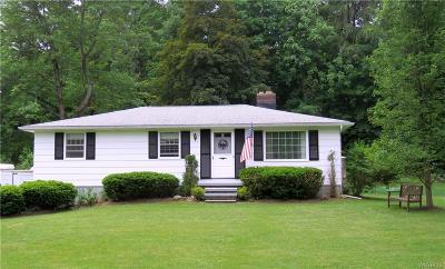 Elma Single Family Home A-Active: 530 Ostrander Road