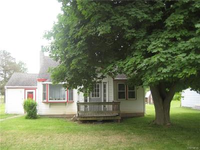 Genesee County Single Family Home A-Active: 6276 Main Road