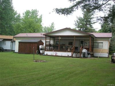 Allegany County, Cattaraugus County Single Family Home A-Active: 8897a Old State Road #A