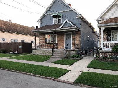 Buffalo Multi Family 2-4 A-Active: 154 Gorski Street