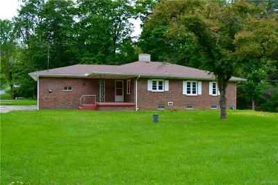 Colden Single Family Home A-Active: 7790 Hayes Hollow Road