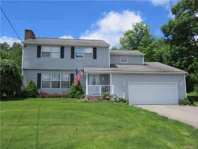 Colden Single Family Home A-Active: 9070 Phillips Road