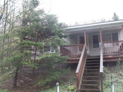 Cattaraugus Single Family Home A-Active: 8370 Mason Hill Road