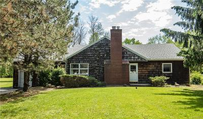 Orchard Park Single Family Home A-Active: 3893 North Freeman Road