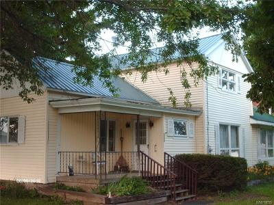 Little Valley Single Family Home A-Active: 5882 Route 353