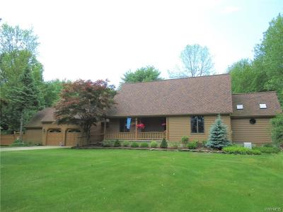 Grand Island Single Family Home A-Active: 3760 East River Road