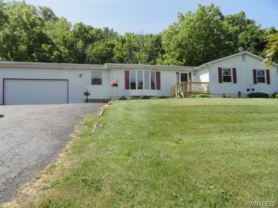 Lewiston Single Family Home A-Active: 1108 Ridge Road