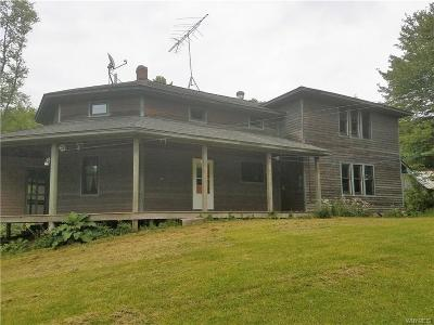 Little Valley Single Family Home A-Active: 9612 Dutch Hill Road