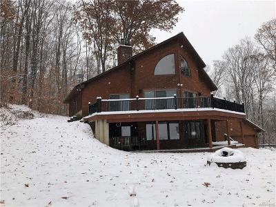 Ellicottville Single Family Home A-Active: 6221 Whitmer Road