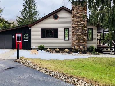 Ellicottville Single Family Home A-Active: 7120 Poverty Hill Road