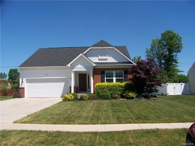Grand Island Single Family Home A-Active: 87 Waterford Park
