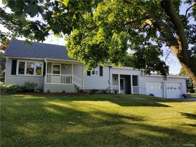 Orleans County Single Family Home A-Active: 4399 Salt Works Road