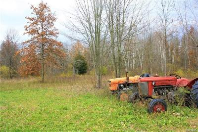 Niagara County Residential Lots & Land A-Active: 2658 Coomer Road