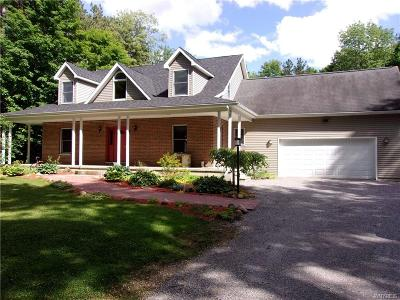 Wethersfield Single Family Home A-Active: 4137 Weber Road