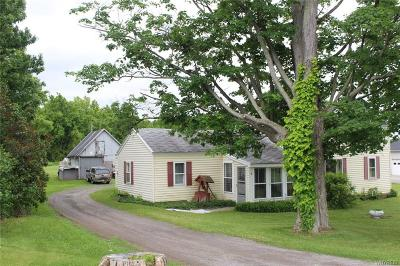 Genesee County Single Family Home A-Active: 3984 Dry Bridge Road