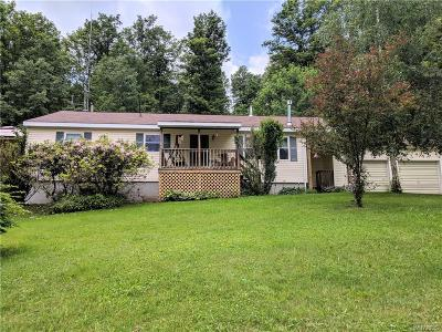Ellicottville Single Family Home A-Active: 8153 South Canada Hill Road