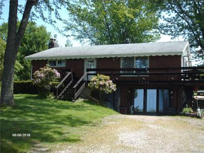 Cattaraugus Single Family Home A-Active: 9244 Dake Hill Road