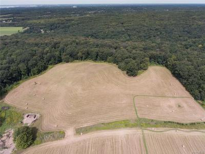 Orchard Park Residential Lots & Land A-Active: Vl Seufert Road