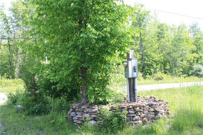 Niagara County Residential Lots & Land A-Active: V/L Coomer Road