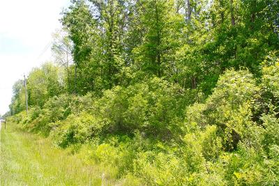 Niagara County Residential Lots & Land A-Active: V/L Ide Road