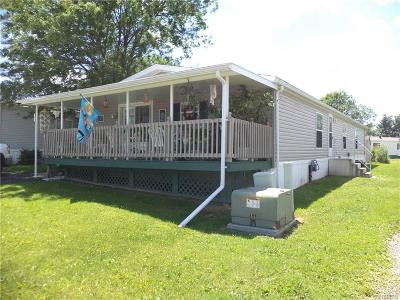 Allegany Single Family Home A-Active: 4115 South Nine Mile #76