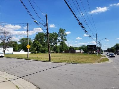 Lackawanna Residential Lots & Land A-Active: 2048 Abbott Road