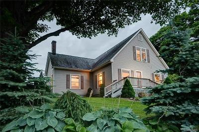 Ellicottville Single Family Home A-Active: 6178 Route 242 East