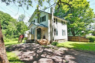 Cattaraugus Single Family Home A-Active: 10050 Leon Road