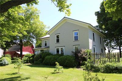 Genesee County Single Family Home A-Active: 10903 Perry Road