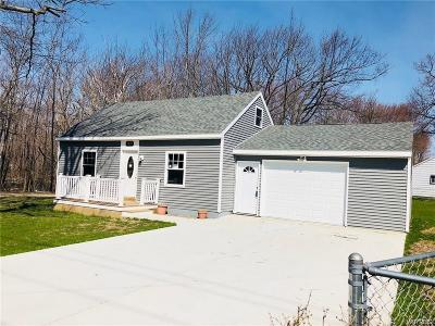 Evans Single Family Home C-Continue Show: 6610 Lake Shore Road