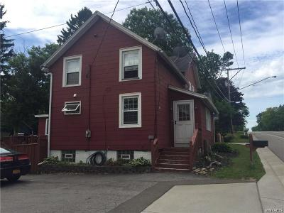 Hamburg Multi Family 2-4 A-Active: 6687 Gowanda State Road