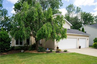Amherst Single Family Home A-Active: 38 Chicory Lane