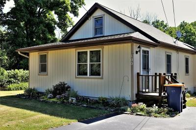Niagara County Single Family Home A-Active: 100 Roby Street