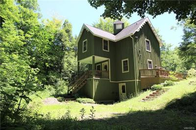 Ellicottville Single Family Home A-Active: 7420 Poverty Hill Road