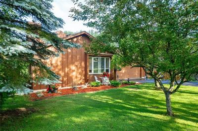 Aurora Single Family Home A-Active: 1965 Reading Road